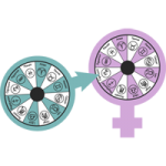 Venus in Aries, Mars in Aries