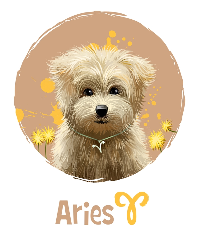 Aries in the Year of the Dog 2018