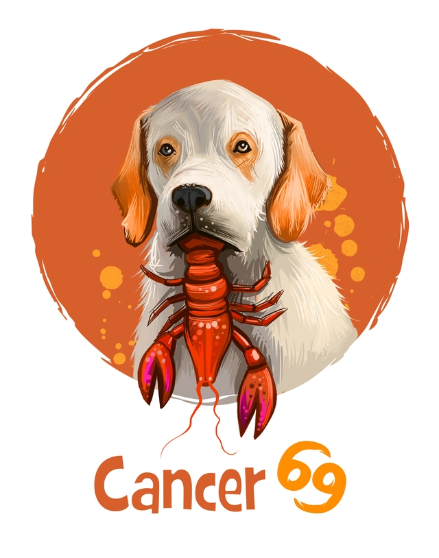 Cancer in the Year of the Dog 2018