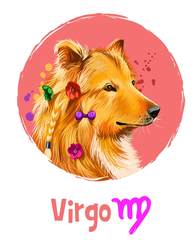 Virgo in the Year of the Dog 2018