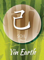 Yin Earth: Soil